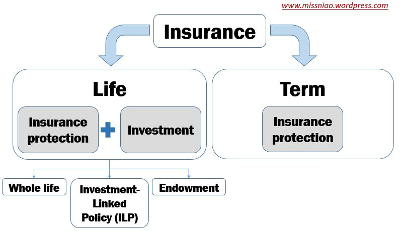Buy Term, Invest the Rest? (BTIR) – The Ultimate Insurance Guide for Beginners (Part 2)