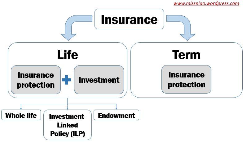 types of insurance.JPG