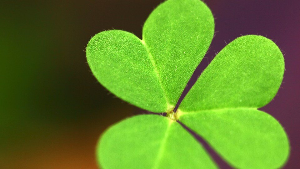How To Be Lucky In Life (and Create Your Own Luck)